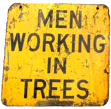 Men in Trees, Plugins and Other Dangers