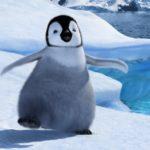 Google Penguin Update Draft Checklist